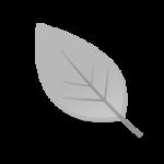 icon_6m_192