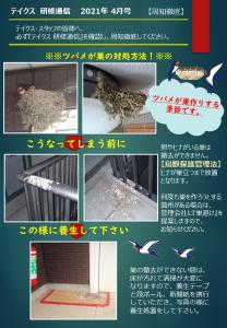 テイクス通信4月号 ツバメの巣の対策